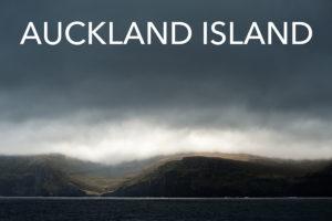 aucklandisland_tw7_6203-editweb