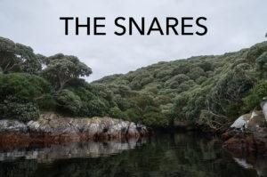 snares_eaw_5541-editweb