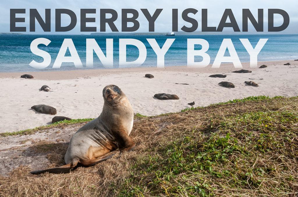 SandyBay_Splash_EAW_6414-EditWEB-1024x680.jpg